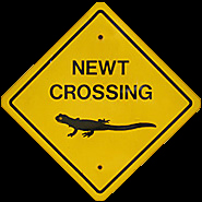 Newt Crossing sign