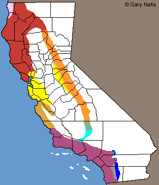 Ensatina California Range Map
